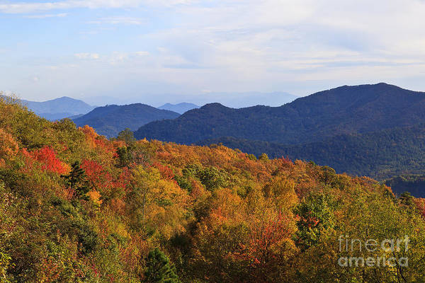 Photograph - Color In The Mountains by Jill Lang