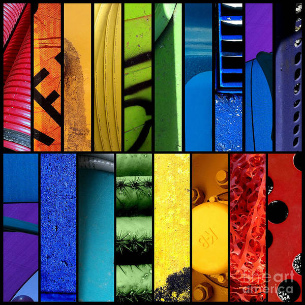 Photograph - Color My World by Marlene Burns