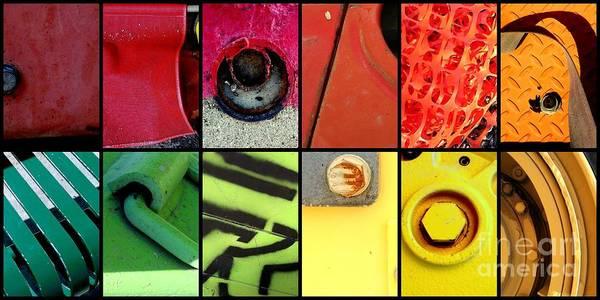 Photograph - Color Scheme by Marlene Burns