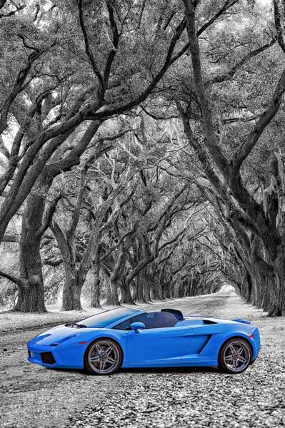 Steve Harrington Wall Art - Photograph - Color Your World - Lamborghini Gallardo by Steve Harrington