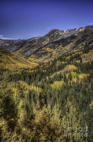 Photograph - Colorado 10 13 by David Waldrop