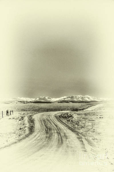Photograph - Colorado Back Road by David Waldrop