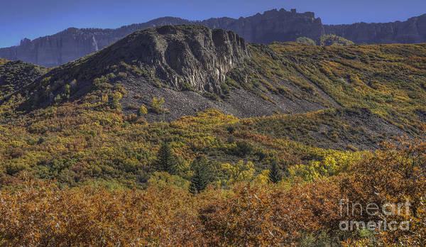 Photograph - Colorado Color by David Waldrop