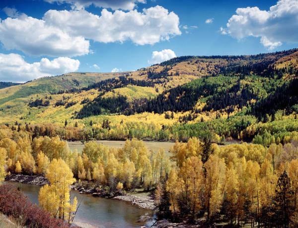 Wall Art - Photograph - Colorado Dolores River by Granger