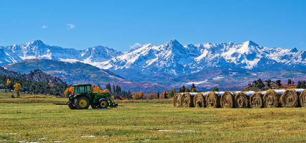 Photograph - Colorado Hayfield by Rick Wicker