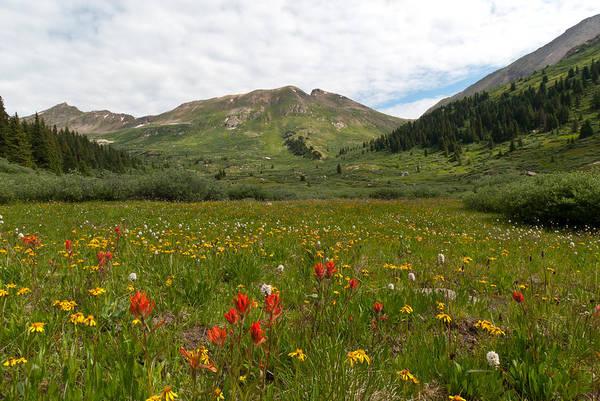 Photograph - Colorado Meadow And Mountain Landscape by Cascade Colors