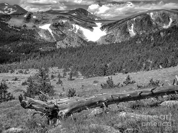 Wall Art - Photograph - Colorado Mountains by Paul Quinn