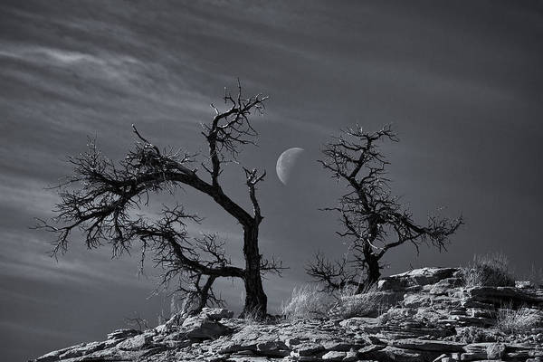 Moonrise Photograph - Colorado National Monument Moonrise by Darren  White