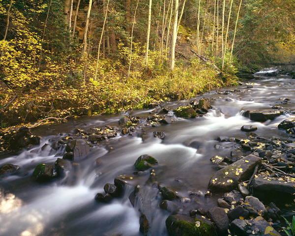 Photograph - Colorado Stream - Fall by Harold Rau