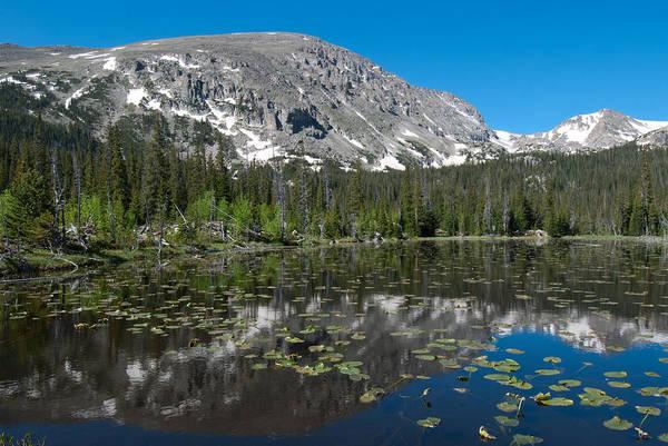 Photograph - Colorado Wild Basin Landscape by Cascade Colors