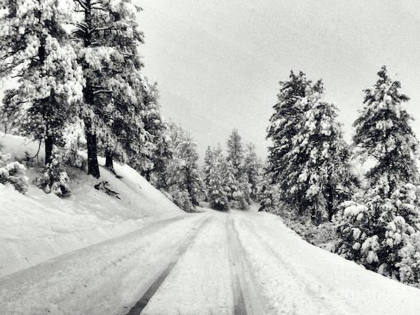 Photograph - Colorado Winter 2 by Karla Weber