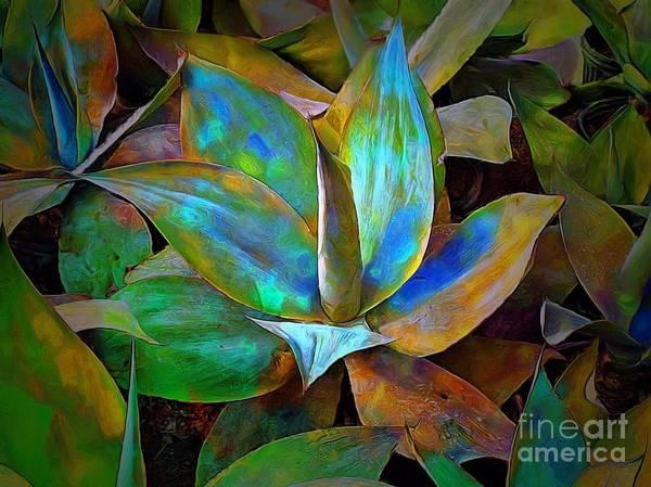 Colored Cactus Art Print
