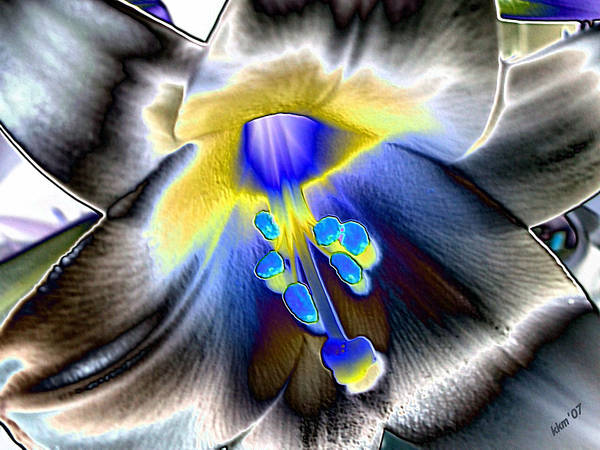 Digital Art - Colored Foil Lily by Kathy K McClellan