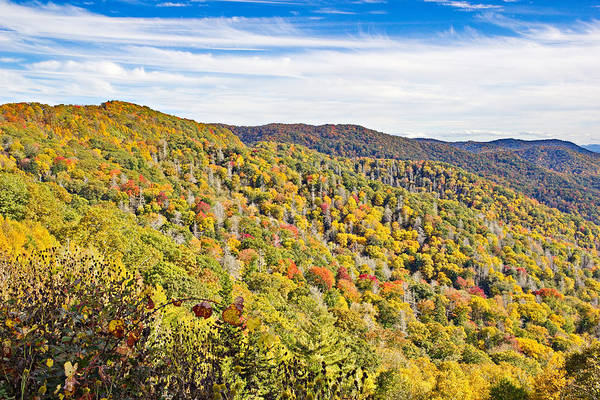 Photograph - Colored In Smoky Mountains by Simply  Photos