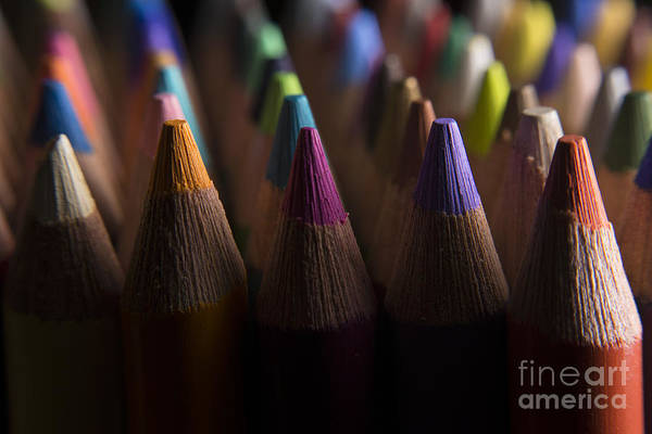 Photograph - Colored Pencils  4 by Art Whitton