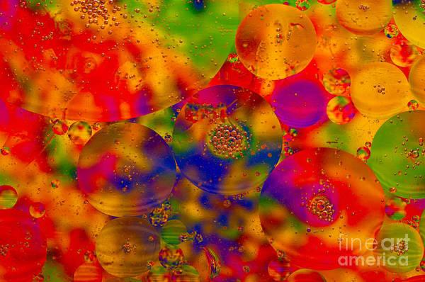 Photograph - Colorful Circles by Les Palenik