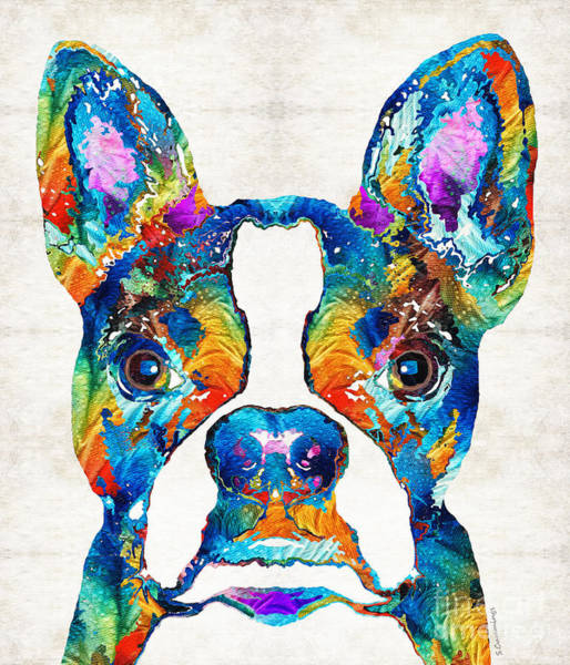 Wall Art - Painting - Colorful Boston Terrier Dog Pop Art - Sharon Cummings by Sharon Cummings