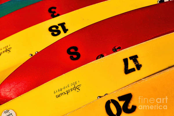 Photograph - Colorful Canoes by Jon Burch Photography