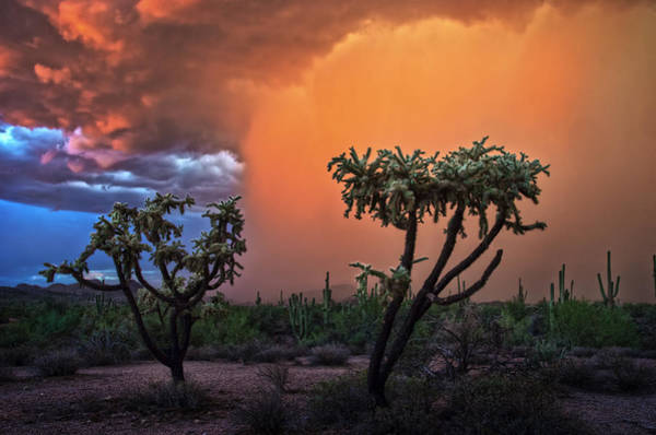 Photograph - Colorful Desert Storm In Central Arizona by Dave Dilli