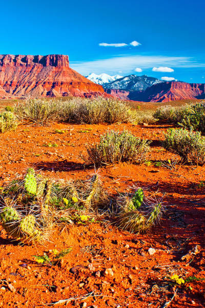 Photograph - Colorful Desert View by Rick Wicker