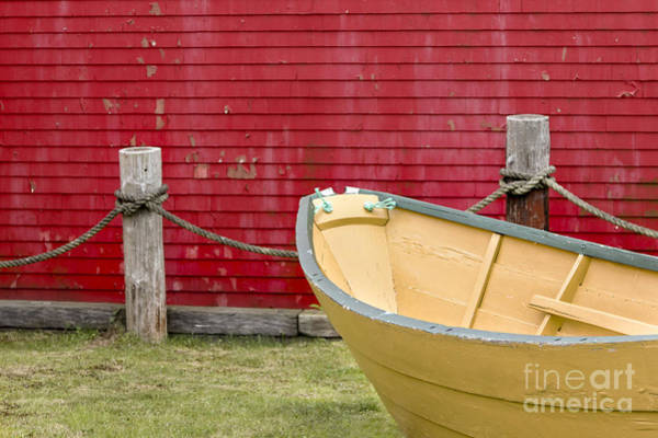 Photograph - Colorful Dory by Karin Pinkham