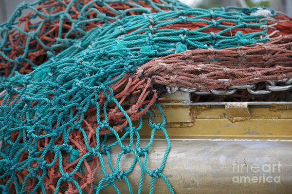 Photograph - Colorful Nets by Carol Groenen