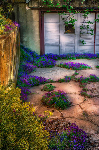 Photograph - Colorful Old Garage by Michael Ash