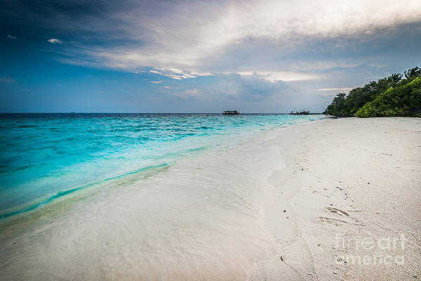 Photograph - Colorful Paradise by Hannes Cmarits