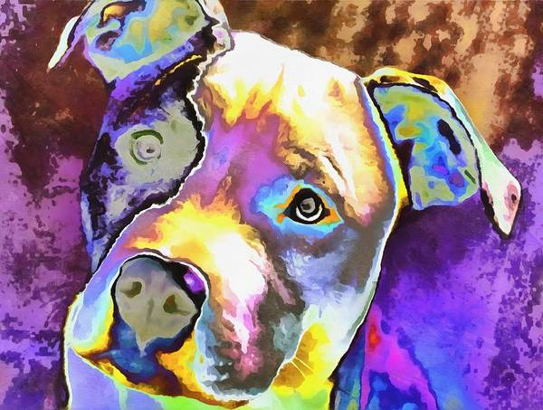 Wall Art - Digital Art - Colorful Pit Bull  by Dan Sproul