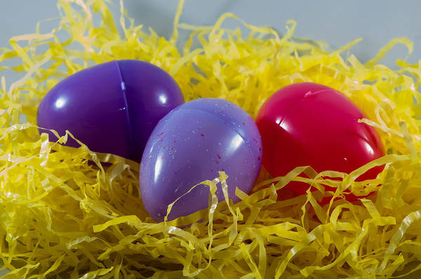 Photograph - Colorful Plastic Easter Eggs In Fake Hay by Alex Grichenko
