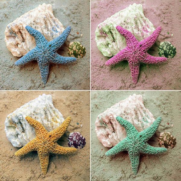 Coastal Digital Art - Colorful Starfish by Kathy Mansfield
