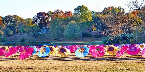 Colorful Umbrellas At The Park Art Print