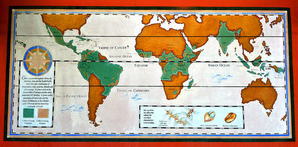 Wall Art - Photograph - Colorful World Map Of Coffee by David Lee Thompson