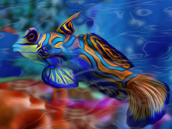 Freshwater Wall Art - Painting - Colors Below 2 by Jack Zulli