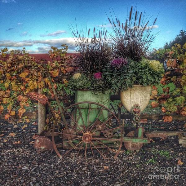 Photograph - Colors Of Autumn by Charlene Mitchell