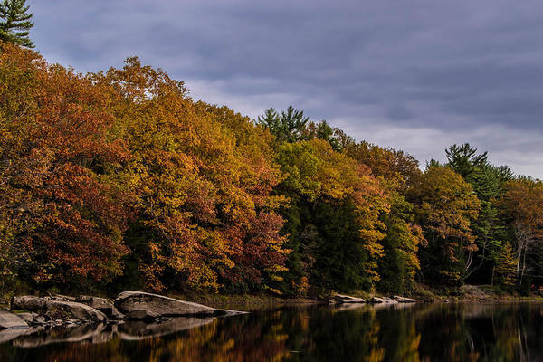 Clarion Photograph - Colors Of Fall by Anthony Thomas