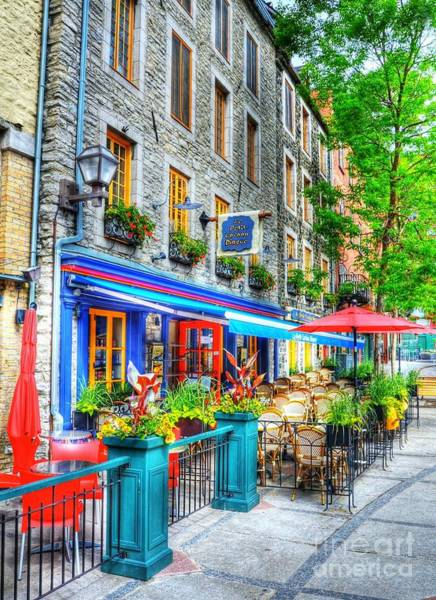 Photograph - Colors Of Quebec 14 by Mel Steinhauer
