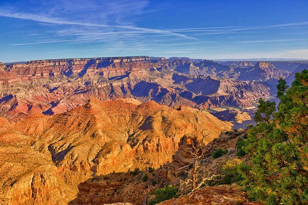 Photograph - Colors Of The Canyon by Greg Norrell