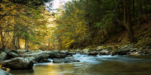 Photograph - Colors Of The River by Dave Hahn