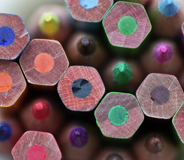 Photograph - Coloured Pencils by Margaret Ford
