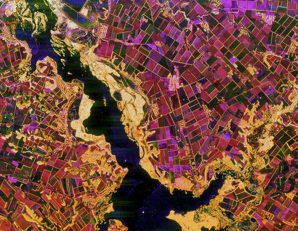 Dnieper Photograph - Coloured Radar Image Of Agriculture In The Ukraine by Nasa/science Photo Library
