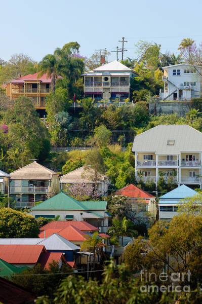 Photograph - Colourful Queenslander Houses On A Steep Hillside  by David Hill