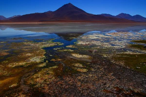 Laguna Mountains Photograph - Colourful Reflections 2 by FireFlux Studios