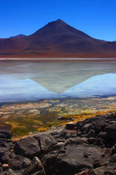 Laguna Mountains Photograph - Colourful Reflections by FireFlux Studios