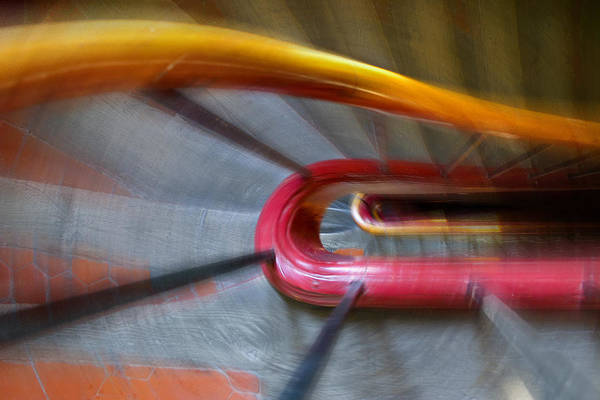 Photograph - Colourful Rush by Jenny Setchell