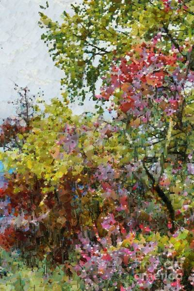 Digital Art - Colourful Spring Garden by Fran Woods