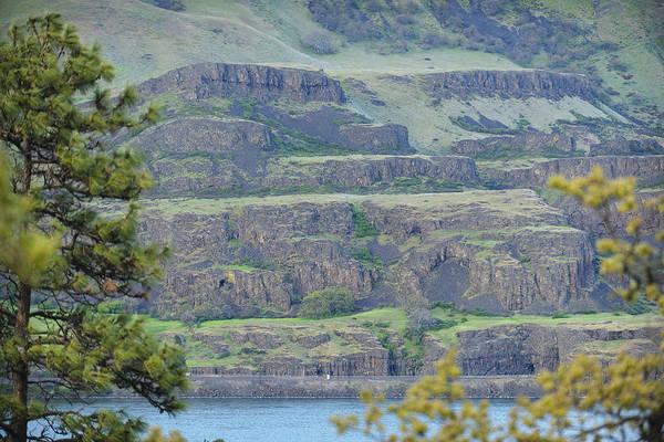 Rowena Photograph - Columbia Gorge Near Lyle 2013 by Derrel Hewitt
