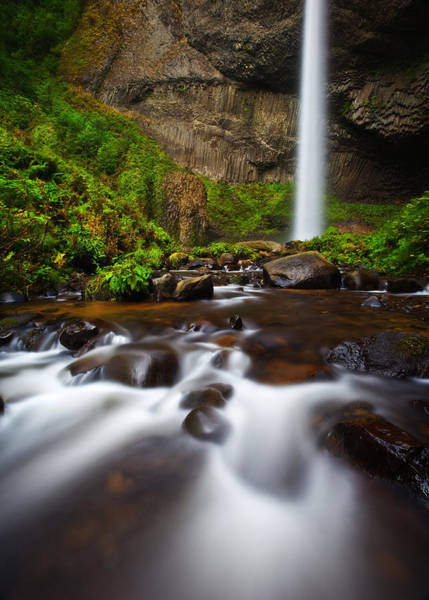 Basalt Photograph - Columbia Gorge Richness by Darren  White
