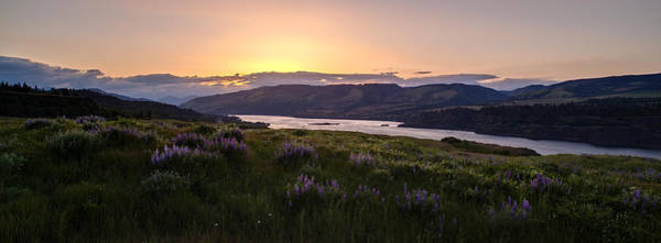 Rowena Photograph - Columbia River Sunset Rowena Crest by Mike Reid