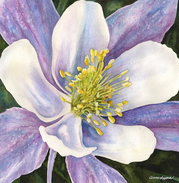 Wall Art - Painting - Columbine Closeup by Anne Gifford